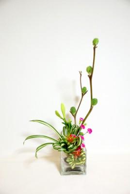 イガナス・テッポウユリ・グズマニア・スプレー咲きカーネーション
