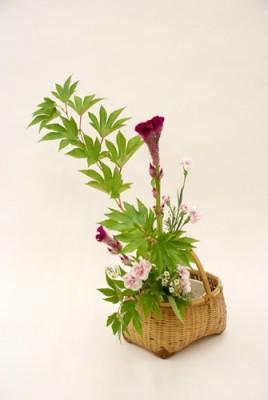 キイチゴ・ケイトウ・スプレー咲きカーネーション・ワックスフラワー